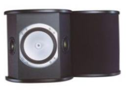 MONITOR AUDIO RS fx Black (пара)